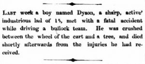 1859 'Local and Domestic Intelligence.', The Inquirer & Commercial News (Perth, WA : 1855 - 1901), 16 November, p. 2